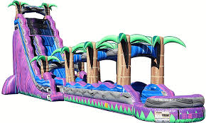 Backyard Water Slide Inflatable by Water Slide Rentals Columbia Sc Inflatable Water Slides In
