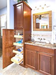Mirrored Tall Bathroom Cabinet - bathroom tall bathroom cabinet 29 design ideas admirable cheap