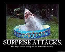 Swimming Pool Meme - shark pool meme pool best of the funny meme