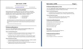 resume exles for it professionals 2 two page resume template shalomhouse us