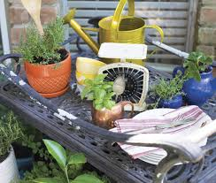 container gardening for decks and patios