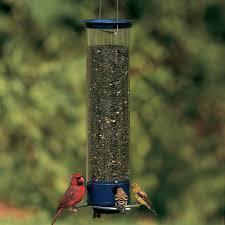 yankee whipper bird feeder ycpw 180 droll yankees