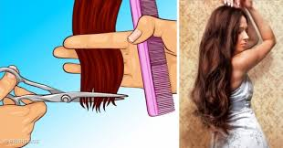 new hair growth discoveries 11 hair myths that prevent us from growing long and healthy hair