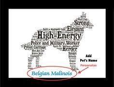 belgian shepherd ornament belgian shepherd 3 ring binder 20 10 on zazzle com the belgian