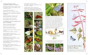 native plants georgia coastal wildscapes pollinator grant info