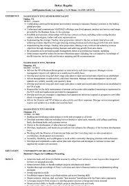 resume sales sales executive senior resume sles velvet