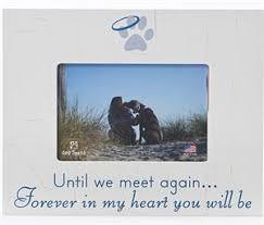 condolences for loss of pet pet memorial frames