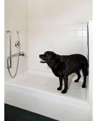 Bathtubs For Dogs 15 Doggone Good Tips For A Pet Washing Station