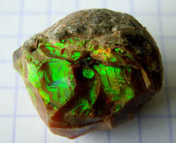 green opal opal from fire opal to white opal rock my world