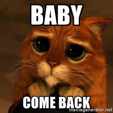 Baby Come Back Meme - baby come back shrek cat v1 meme generator