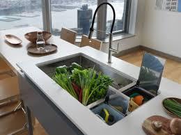 Kitchen Sinks KBtribechat - Gourmet kitchen sinks