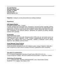 Sap Resume Examples by Resume Samples