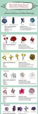 wedding flowers meaning the meaning of flowers by botanicals pretty flowers