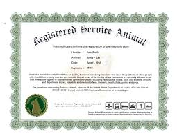 stock certificate format how to write an effective executive summary