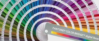 pantone color forecast 2017 top pantone color trends for 2017 modern home decor