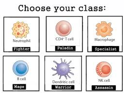 Biology Memes - the squad biology immunology cells via high recombination