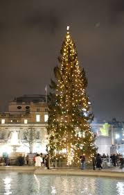 trafalgar square christmas tree wikipedia