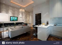 grey and white apartment with kitchen open to tv living room stock