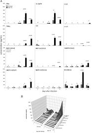 Stat1 Negatively Regulates Immune Mediated Injury With Anaplasma