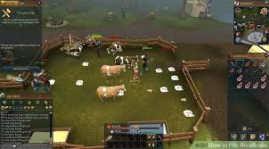 Cowhide Rs 3 Ways To Play Runescape Wikihow
