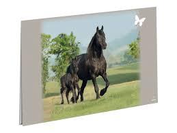 sous cheval bureau oberthur cheval complice sous sous