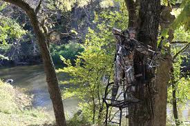 hanging tree stands how to trim and hunt shooting lanes big