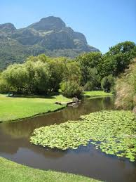 Kirstenbosch National Botanical Gardens by Kirstenbosch Is Dotted With Ponds Cool Streams And Other Water