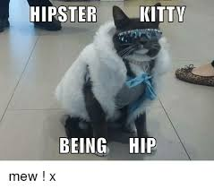 Hipster Cat Meme - 25 best memes about hipster kitty hipster kitty memes