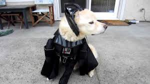 Halloween Costumes Darth Vader Star Wars Darth Vader Pet Dog Halloween Costume