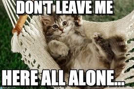 All Alone Meme - don t leave me cute hammock kitten meme on memegen