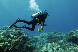coral nasa earth expeditions