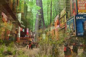 New York forest images Popup forest times square an initiative to bring a temporary png