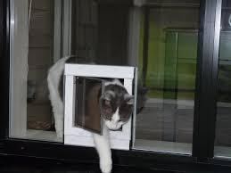 Patio Sliding Door Installation Dog Door Sliding Glass Door Patio Door Dog Door Doggie Door Dog