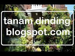 Vertical Garden Adalah - cara membuat taman vertikal taman vertikal taman vertikal garden