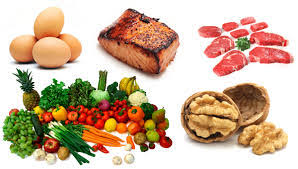 the ultimate paleo diet food list best paleo recipes and paleo