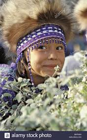 alaska native plants alaska native heritage center stock photos u0026 alaska native