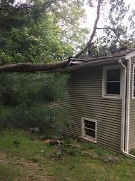 Building A House In Ct Tree Vs House In Monroe Connecticut Post