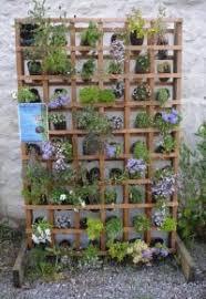 Wildlife Garden Ideas Wildlife Gardening In Small Spaces Herts And Middlesex Wildlife
