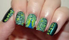 peacock nail art designs 2014 15 for modern young girls