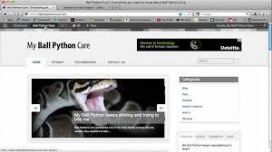 wordpress how to add login logout to main menu youtube