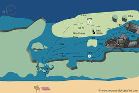 Red Sea World Map by Red Sea Diving Safari Marsa Alam Diving