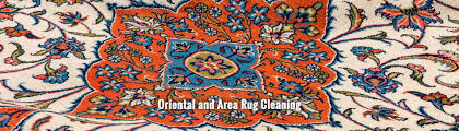 citrus fresh carpet cleaning in charleston sc area rug cleaners