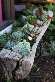 treppen verschã nern herrlich saftigen planters sofort verschã nern ihres hauses haus