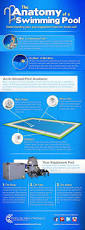 Blue Haven Pools Tulsa by The Anatomy Of A Swimming Pool Infographic Poolsupplyworld
