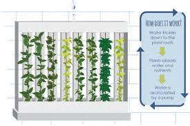 the zipgrow farm wall grow real food anywhere