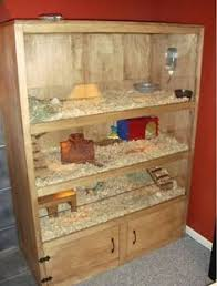 Rabbit And Guinea Pig Hutches A Little Piggy Home So Cute You Could Put Extra Shavings And