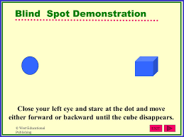 Blind Spot Left Eye Sensation And Perception Ppt Download