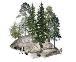 architecture plans landscape architecture plan trees interior design