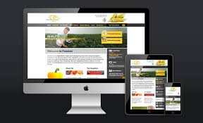 Home Based Graphic Design Business Broadgate Creative Aylesbury Based Graphic Design Agency For