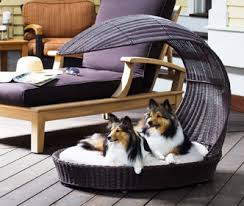 Dog Bed Furniture Sofa by Dog Furniture And Dog Beds From The Refined Canine Luxury Maker
